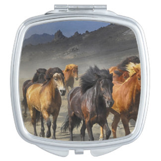 Wild Horses Compact Mirrors