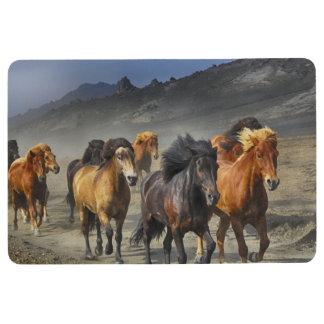 Wild Horses Floor Mat
