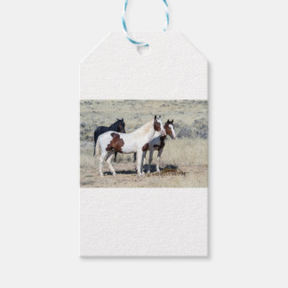 WILD HORSES GIFT TAGS