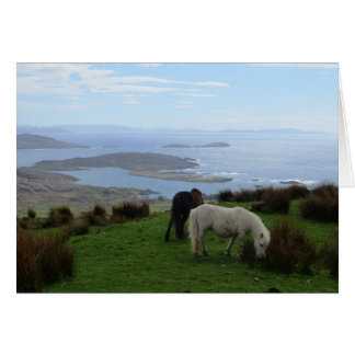 Wild horses in Ireland Card