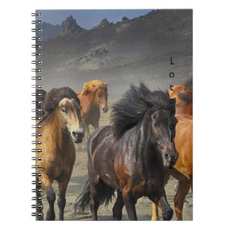Wild Horses Notebooks