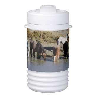 Wild Horses of Sand Wash Basin, Colorado Drinks Cooler