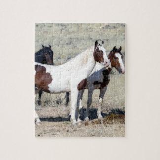 WILD HORSES PUZZLES