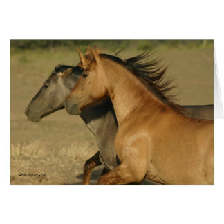 Wild Horses Returning to Freedom Card