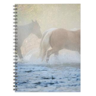 Wild horses running through water notebook