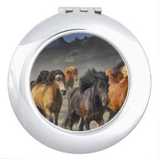 Wild Horses Vanity Mirror