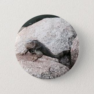 Wild Iguana 6 Cm Round Badge