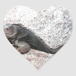 Wild Iguana Heart Sticker
