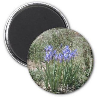 Wild Iris 6 Cm Round Magnet