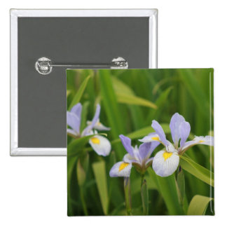 Wild Iris Pins