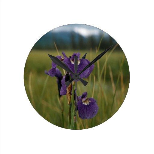 Wild Iris Round Wallclock