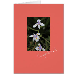 Wild Iris Congratulations Greeting Card