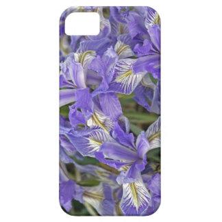Wild Iris cover iPhone 5 Covers