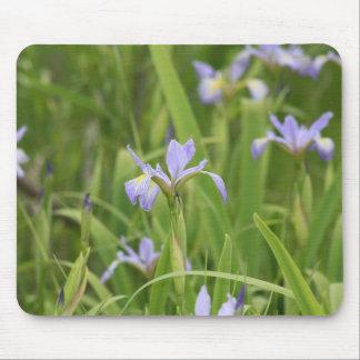 Wild Iris Mouse Pads