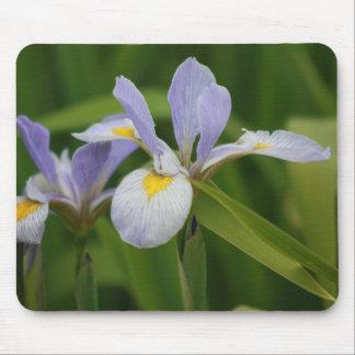 Wild Iris Mouse Mat