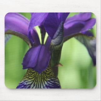Wild Iris Mousepad