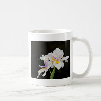 Wild Iris Mugs