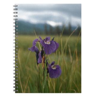 Wild Iris Spiral Notebooks