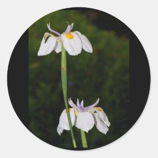 Wild Iris Classic Round Sticker