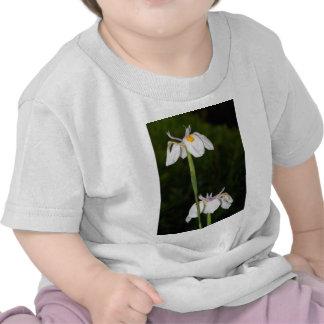 Wild Iris Shirt