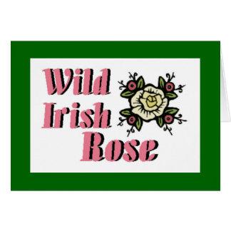 Wild Irish Rose Note Card