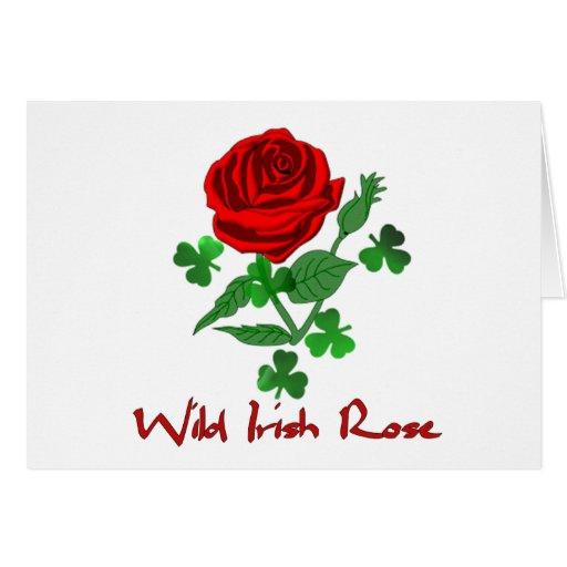 Wild Irish Rose Greeting Card