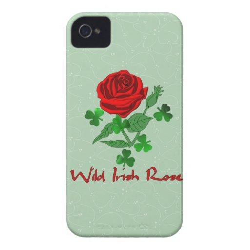 Wild Irish Rose Blackberry Cases