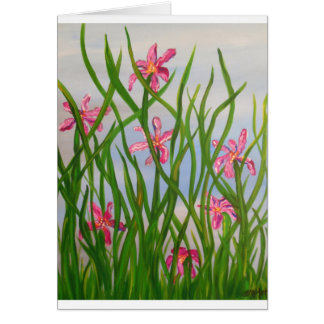 Wild Iris's.JPG Card