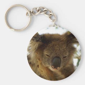 Wild koala sleeping on eucalyptus tree, Photo Basic Round Button Key Ring