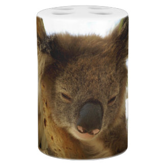 Wild koala sleeping on eucalyptus tree, Photo Soap Dispenser And Toothbrush Holder