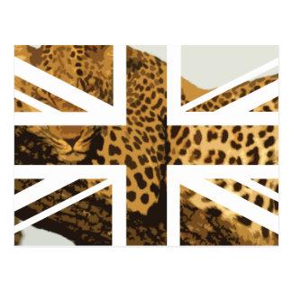 Wild Leopard Jack British(UK) Flag Postcard