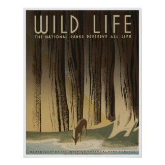 Wild Life: National Parks Service Poster