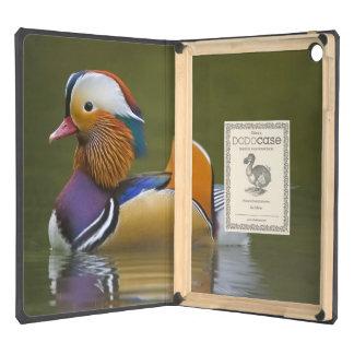 Wild Mandarin Duck Aix galericulata) on dark iPad Air Cases