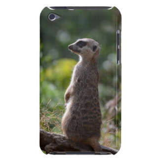 Wild Meerkat Barely There iPod Cases