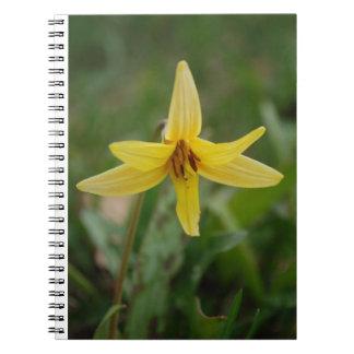 Wild miniature spring lily flower spiral notebook