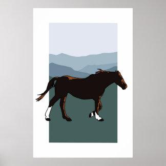 Wild Mountain Mare Poster