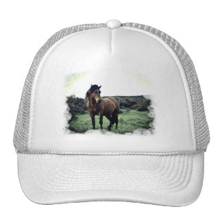 Wild Mustang Baseball Hat