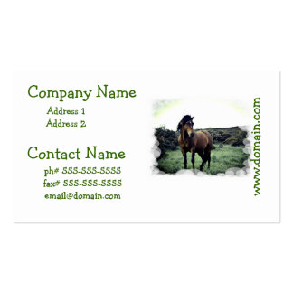 Wild Mustang Business Cards