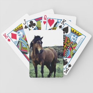 Wild Mustang Deck of Cards Bicycle Playing Cards