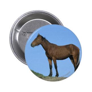 Wild Mustang Horse 6 Cm Round Badge