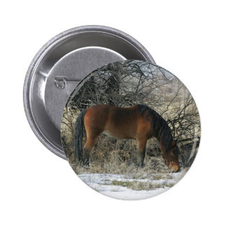 Wild Mustang Horse in the Snow 1 Pin