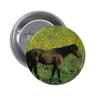 Wild Mustang Horse Standing in Flowers Pinback Button