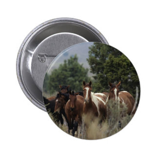 Wild Mustang Horses 2 6 Cm Round Badge