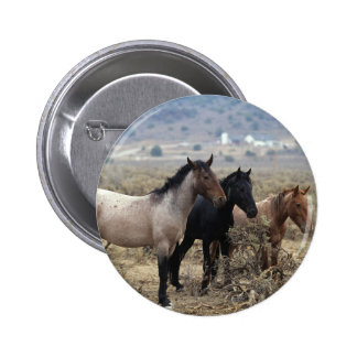 Wild Mustang Horses 5 Pinback Buttons