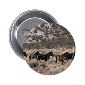 Wild Mustang Horses in the Desert 2 Buttons