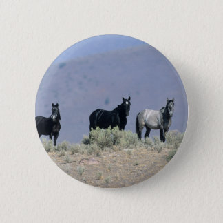 Wild Mustang Horses in the Desert 3 6 Cm Round Badge