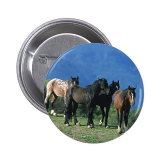 Wild Mustang Horses in the Mountains 6 Cm Round Badge