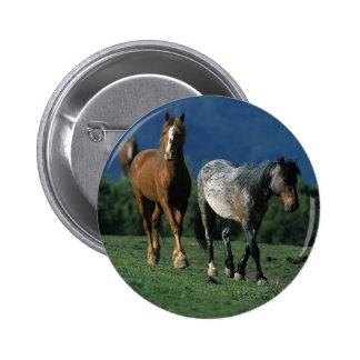 Wild Mustang Horses Pins