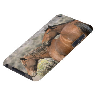 Wild Mustang Horses Touching iPod Touch Cover