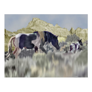 Wild Mustang Mare and Foal Art Print Postcard